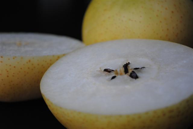 20th Century Pear