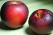 arkansas-black-apple-whole