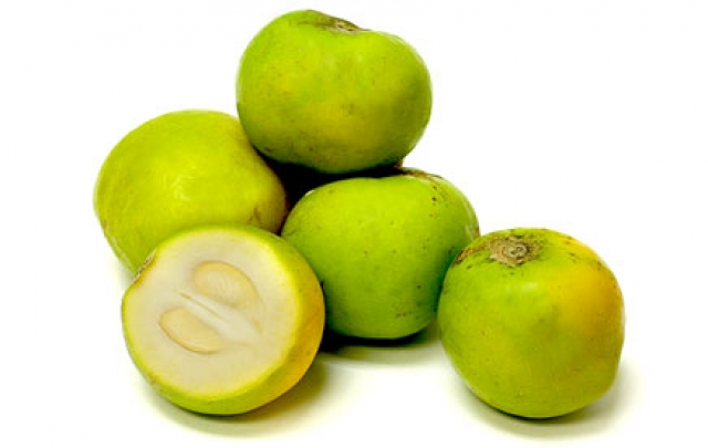 sapote