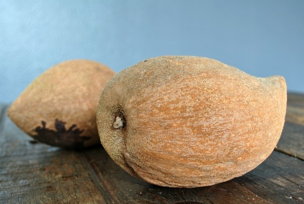 whole-mamey-sapote