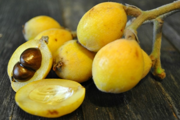 loquats-sliced