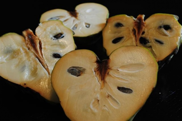 Dr. White Cherimoya
