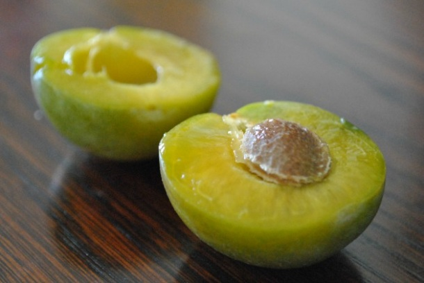 green-gage-plums