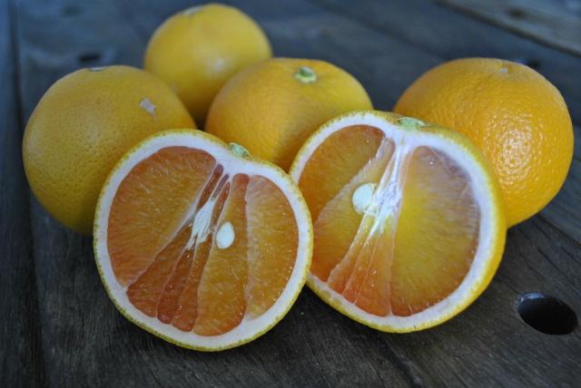 mango-oranges