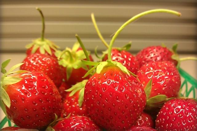 mara des bois strawberry review fruit maven. Black Bedroom Furniture Sets. Home Design Ideas