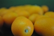 meiwa-kumquats