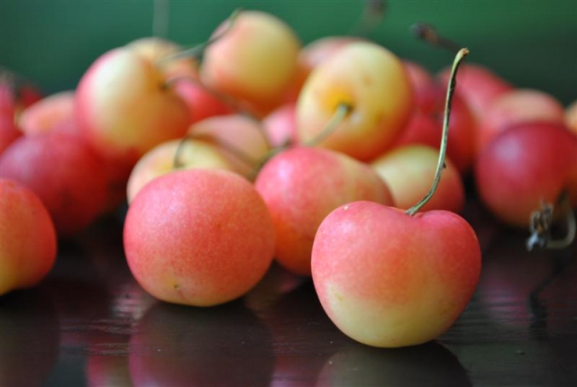 Rainier Cherry | Fruit Maven