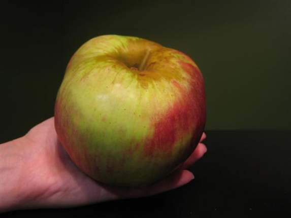 red-prince-apple-whole-small