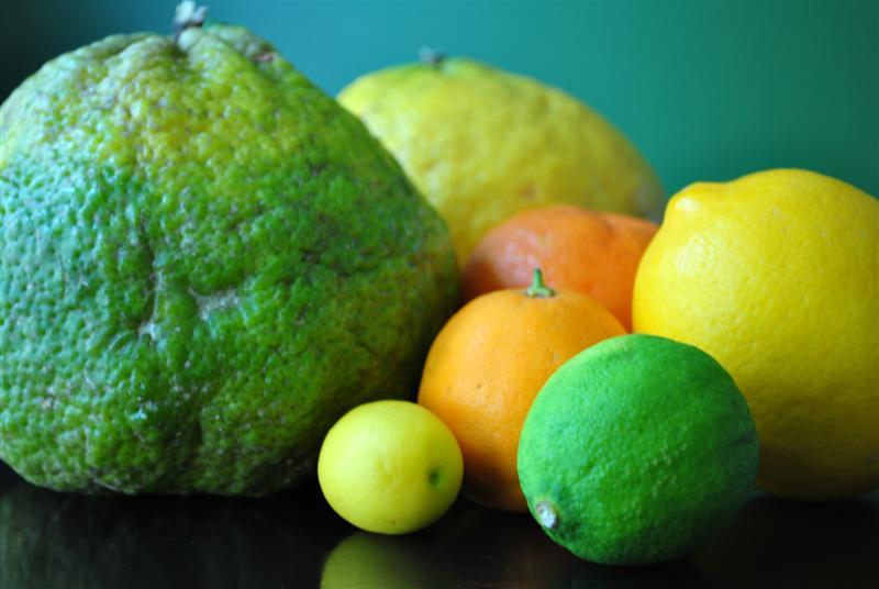 ugli fruit devil fruits