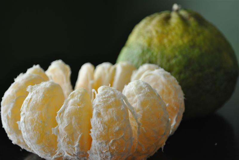 Ugli Fruit (Tangelo)
