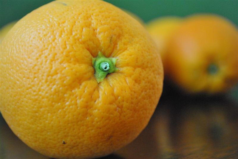 Sky Valley Heirloom Navel Orange