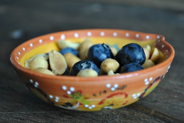 Salty Peanut and Blueberry Snack