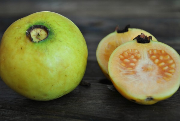 White Indian Guava