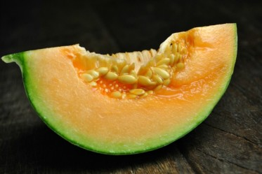 charentais melon slice