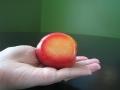 flavorosa-pluot-slice