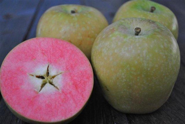 hidden rose apples