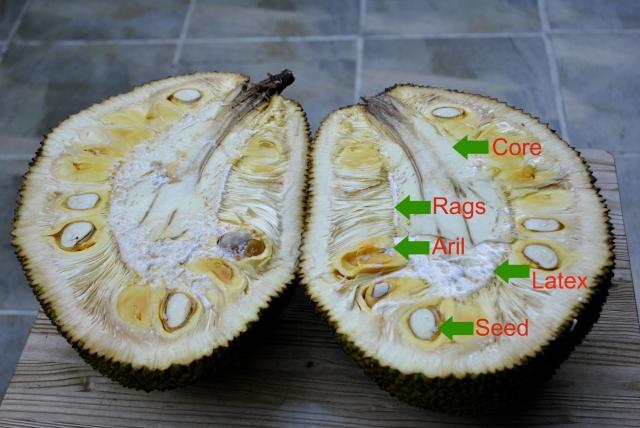cut-jackfruit-chart