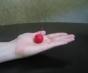 mandarin-crabapple-whole