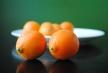Mandarinquat