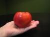 Nectarine-Supersweet-Whole