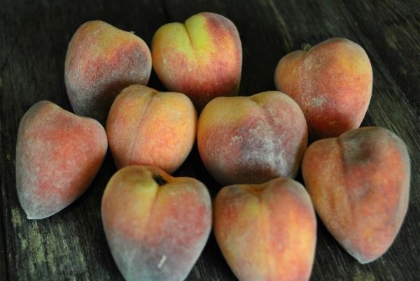 desert-gold-peaches