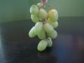 princess-grape-bunch