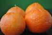 whole-shasta-tangerines