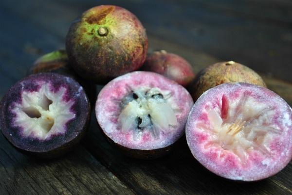 pink-purple-cut-star-apple