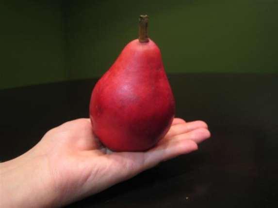 starkrimson-pear-whole