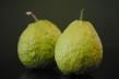 vietnamese-guava-whole