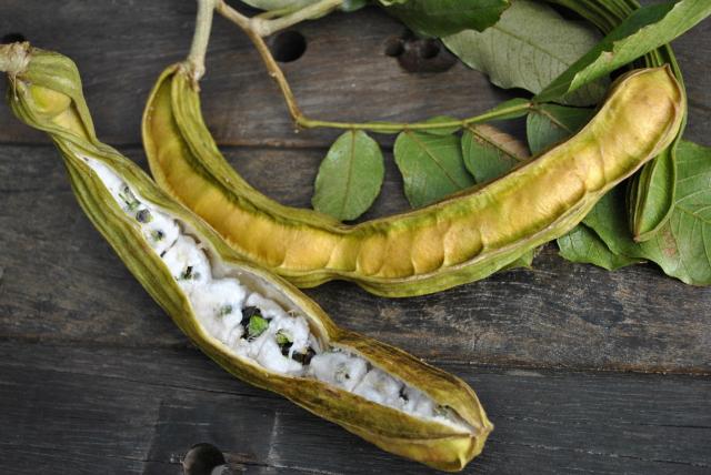 Ice Cream Bean Fruit