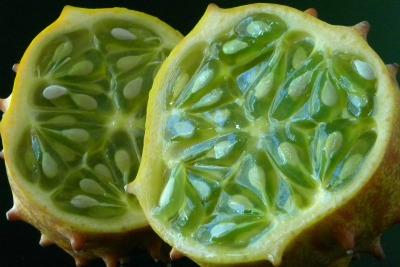 Fruit is Fabulous: An Alphabet Book